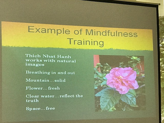 A Talk on Mindfulness (24)