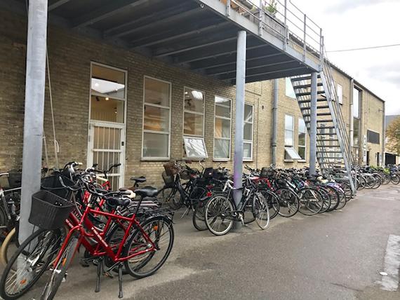 Biking in Copenhagen (2)