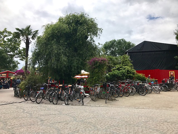 Biking in Copenhagen (3)