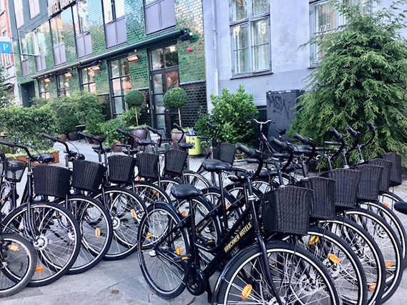 Biking in Copenhagen (5)