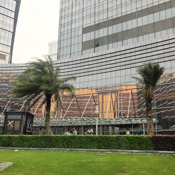 City of dreams macau typhoon hato tying trees