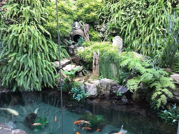 Garden by Mikko Sison (3)